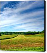 Field Of Dreams Two Canvas Print by Steven Ainsworth