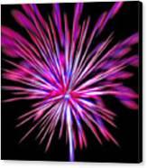 Fireworks Americana Canvas Print by Steve Ohlsen