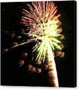 Fireworks From A Boat - 9 Canvas Print by Jeffrey Peterson