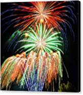 Fireworks No.1 Canvas Print by Niels Nielsen