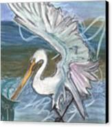 Fishing Egret Canvas Print by Stu Hanson