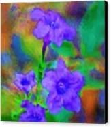 Floral Expression Canvas Print by David Lane