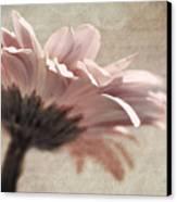 Flower Poetry Canvas Print by VIAINA Visual Artist