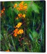 Flowers In The Woods At The Haciendia Canvas Print by David Lane