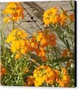 Flowers Orange 2 Canvas Print by Warren Thompson