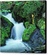 Flowing Softly Canvas Print by Bill Morgenstern