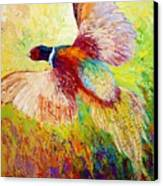 Flushed - Pheasant Canvas Print by Marion Rose