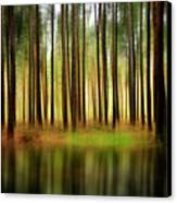 Forest Abstract Canvas Print by Svetlana Sewell