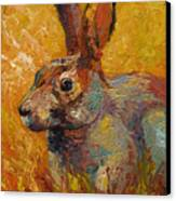 Forest Rabbit IIi Canvas Print by Marion Rose