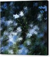 Forget Me Not Canvas Print by David Lane