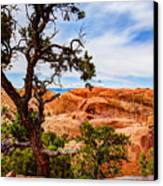 Framed Arch Canvas Print by Chad Dutson
