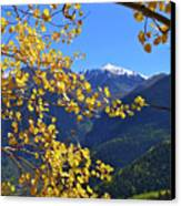 Framed By Fall Canvas Print by Scott Mahon