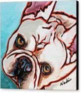 French Bulldog Canvas Print by Nadi Spencer