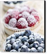 Fresh Berry Tarts Canvas Print by Elena Elisseeva