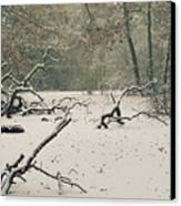 Frozen Fallen Wide Canvas Print by Andy Smy