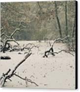 Frozen Fallen Wide Canvas Print by Andy Smy