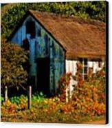 Garden Shed Canvas Print by Helen Carson