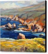 Garrapata Spring Canvas Print by Karin  Leonard