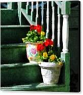 Geraniums And Pansies On Steps Canvas Print by Susan Savad