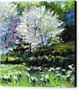 Germany Baden-baden Spring 2 Canvas Print by Yuriy  Shevchuk