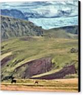Glacier Mountains Meadows Horses Canvas Print by David Halperin