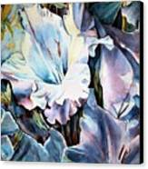 Glads White  Canvas Print by June Conte  Pryor