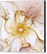 Golden Glow Canvas Print by Amanda Moore