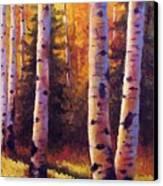 Golden Light Canvas Print by David G Paul