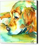 Golden Retriever Profile Canvas Print by Christy  Freeman