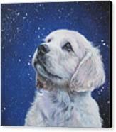 Golden Retriever Pup In Snow Canvas Print by Lee Ann Shepard