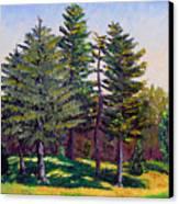 Gp 10-12 Canvas Print by Stan Hamilton