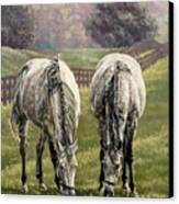 Grazing Canvas Print by Thomas Allen Pauly