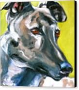 Greyhound Canvas Print by Susan A Becker