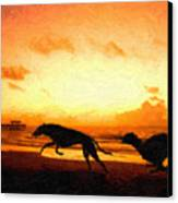 Greyhounds On Beach Canvas Print by Michael Tompsett