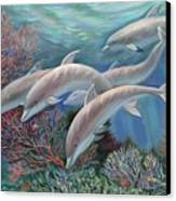 Happy Family - Dolphins Are Awesome Canvas Print by Svitozar Nenyuk
