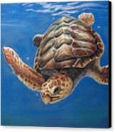 Hatties Release Canvas Print by Deb LaFogg-Docherty