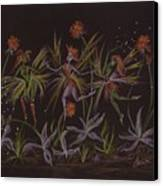 Hawkweed Dance Canvas Print by Dawn Fairies