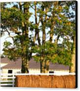 Hay Bales And Trees Canvas Print by Todd A Blanchard