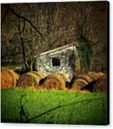Hayroll Shed Canvas Print by Michael L Kimble