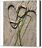 Heart Strings Canvas Print by Peter Tellone