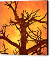 Hell Canvas Print by Charles Dobbs