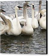 Hey Listen Up Canvas Print by Laurie With