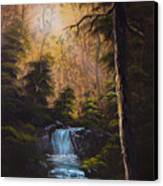 Hidden Brook Canvas Print by C Steele