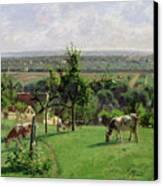 Hillside Of Vesinet Canvas Print by Camille Pissarro
