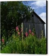 Hollyhock Barn Canvas Print by Michael L Kimble