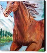 Horse Painting Canvas Print by Bekim Axhami