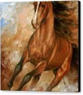 Horse1 Canvas Print by Arthur Braginsky