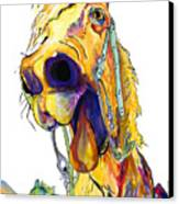 Horsing Around Canvas Print by Pat Saunders-White