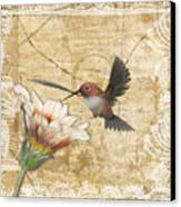 Hummingbird And Wildflower Canvas Print by Lesley Smitheringale