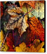 I Love Fall 2 Canvas Print by Joanne Coyle
